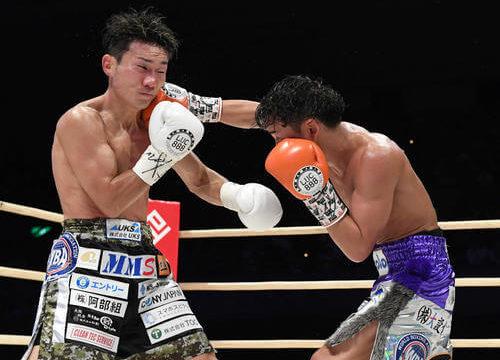 LUC888 ボクシング